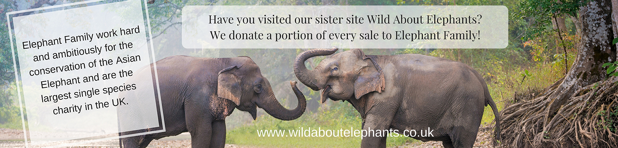 Wild About Elephants Is A Passionate Company Who Championing New Way Of Doing Business As The Sister Present We Continue To Do
